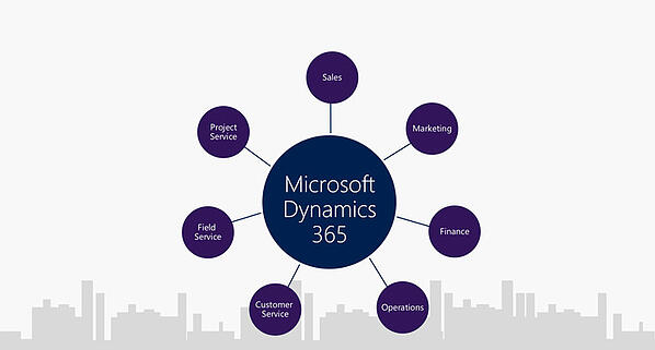microsoft dynamics 365 licenties