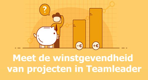 Winstgevendheid met project management